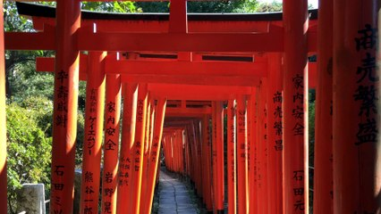 Tokyo Nezu Temple