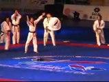 Korean Tigers taekwondo demo