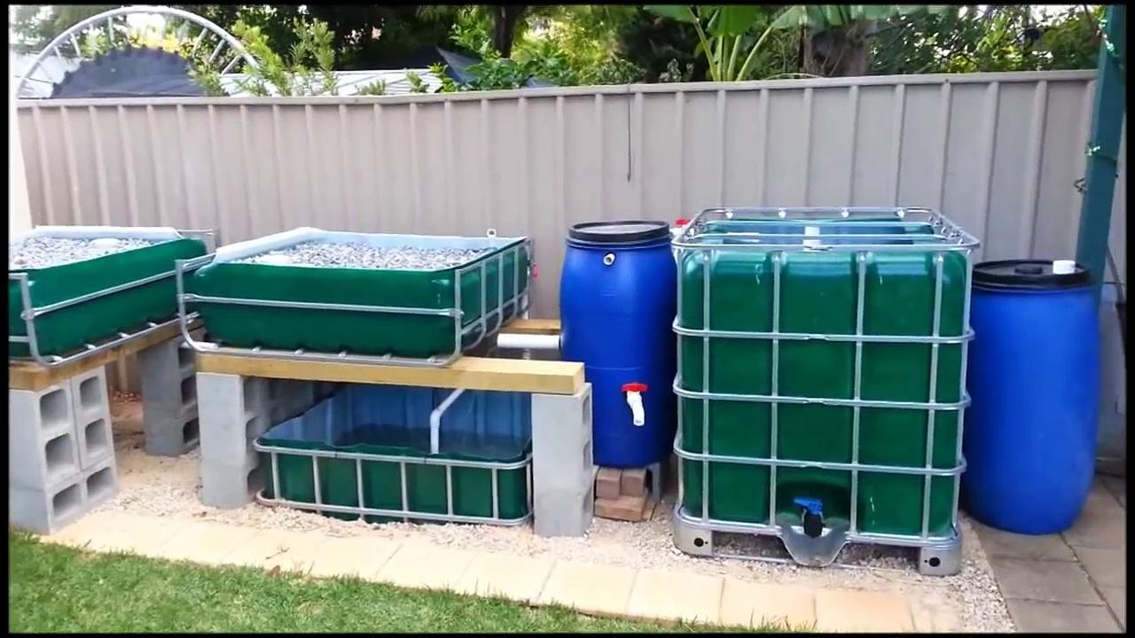 Aquaponics Systems – Easy Backyard Design & Latest Aquaponics Methods