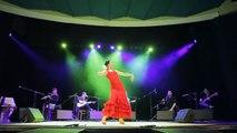 Flamenco guitar, baile, dance, Danza del Fuego, grupa flamenco, how to play flamenco