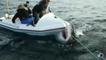 Un requin blanc attaque leur bateau pneumatique pendant un tournage