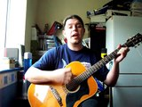 Heaven - Bryan Adams - Acoustic Rock Cover by Phil Colwill Beavisthelizard