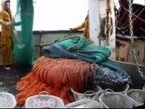 chalutier morgane-bihan en pêche