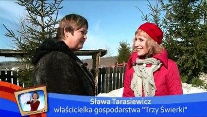 Trzy świerki - Agroturystyka na Mazurach - Gołdap - Pani Sława Tarasiewicz