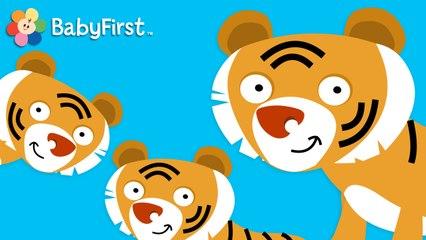 Des Chiffres Autour du Monde: trois tigres