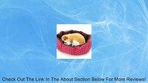 Fashion Soft Cotton Fleece Pet Dog Puppy Cat Warm Bed House Plush Cozy Nest Mat Pad Pet Bed Rose Red Review