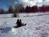 BEST Pugs-on-sleds Compilation: pugs on sleds!