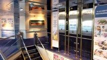 "DFDS Minicruise Amsterdam - Newcastle Teil 1/3: Hinfahrt mit ""Princess Seaways"""