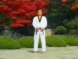"""WTF Taekwondo - Taegeuk Ee Jang (2nd Poomse)  """"Lake"""""""