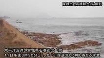 【東日本大震災】宮城県石巻市に大津波