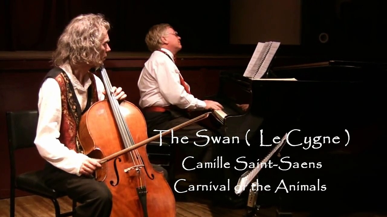 Saint-Saens The Swan  Music Video of the Year 2009 (Sydney Video Makers)
