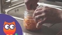 Comment mettre ses légumes en bocaux (Ooreka.fr)