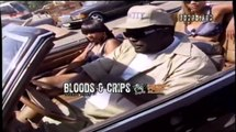 Bloods & Crips - Steady Dippin' (HD)