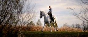 The Most Beautiful Horses of the Hungarian National Stud - Kappel Edit és lipicai lovai