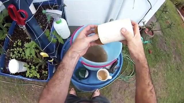 Simple filtration in small scale aquaponics