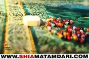 Haider as ka Musallah Mir Hassan Mir Manqabat 2015 ShiaMatamdari.com