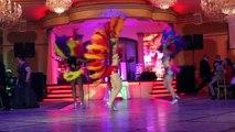 Samba Flamenco Tango Fire Belly Dance Show Variety Mix cool