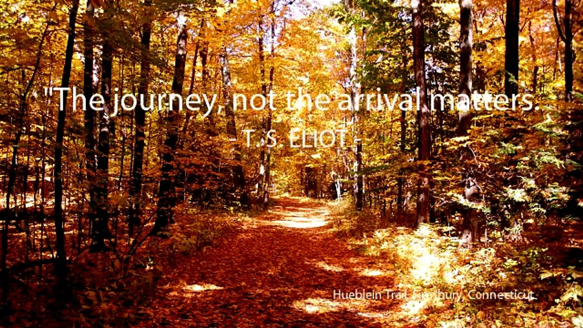 Traveling Quotes, Travel quotes and sayings
