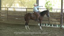 Training a Horse on Cattle - cutting horse - ranch sorting - reined cow horse