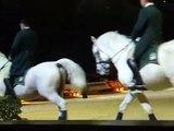 cheval passion a avignon