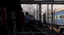 Indian passengers wait at platform to board Shramjeevi Express train