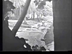 Abertura e fechamento da novela Joao da Silva TVE 1973