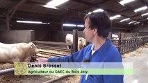 Méthanisation agricole énergie renouvelable ou comment recycler les déchets en énergie