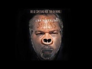 Animal Sapiens - Documentary