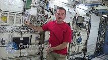 Chris Hadfield décrit l'expérience canadienne BCAT-C1