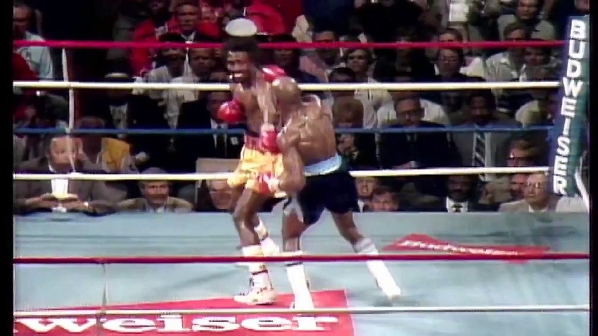Boxing Motivation - The reality of Boxing
