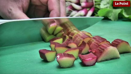 Le millefeuille rhubarbe-oseille d'Alain Passard