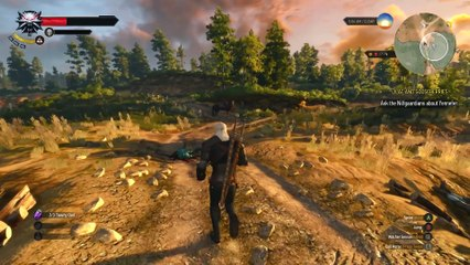 The Witcher 3 : Wild Hunt - Gameplay 2/3 de The Witcher 3 : Wild Hunt