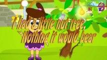 I had a little nut tree,  rhymes  kidz