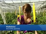 Madeleine, ouvrière serriste - une vidéo métier Pôle emploi