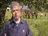 travail avec les ânes - jardin bio - traction animale - ânes et handicap - asinerie de l'O