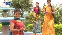 Balam Ji De Jahiha बलम जी दे जहिहs - Head Light Dekhaweli - Bhojpuri Hot Songs 2015 HD