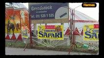 Zirkus 'Safari' in Liesing