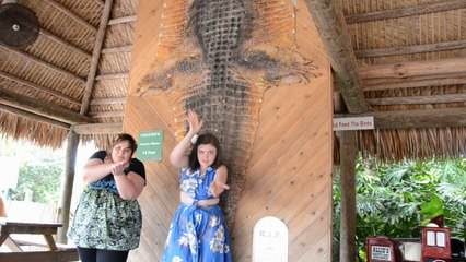 Louisiana-Bahamas-Florida 2014, jour 11: Alligator Farm