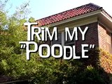 Prank Call - Trim My Poodle - Lance Krall