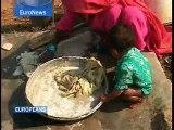 EuroNews - Europeans - SP - El algodón transgénico en India