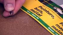 How To Speed Up Seed Germination By Scarifying Seeds