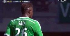 Loic Perrin Goal Saint Etienne vs OGC Nice 1-0 | Ligue1 10.05.2015 HD
