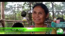 Khmer News Today - Cambodia News This Week - 09 May 2015 - RFA News Video #191