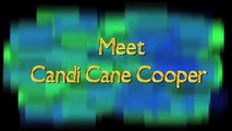 Meet Candi Cane Cooper / Animal Communicator / Horse Whisperer / Dog Whisperer