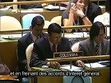 Déclaration de l'ONU sur les droits des peuples autochtones