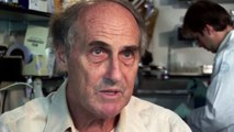 Ralph Steinman, Nobel prize winner, speaks about dendritic cells and immune-based vaccines