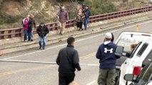 Des ours noirs chassent des touristes aux Etats-Unis