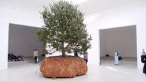 Inauguration du pavillon Français de la 56e Biennale de Venise