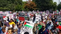 Free free palestine London 100,000 people protest against Israel - Pro Palestine 2014 demonstration