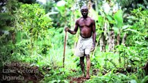Stop land grabbing! Life, land, and justice in Uganda